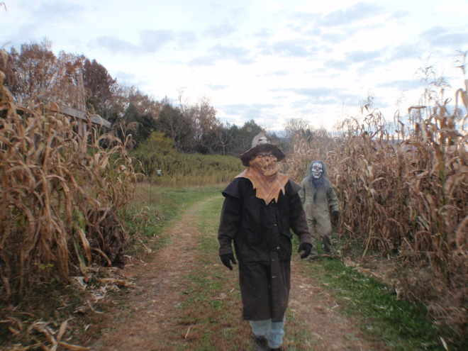 The Haunted Trade Day Hayride!