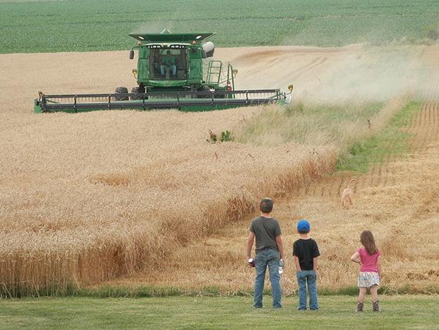 Extension Offers Additional Farm Bill Training