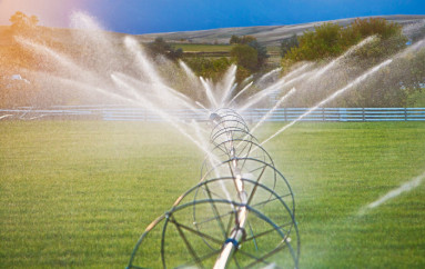 Grant Will Fund ALFA Irrigation Initiative
