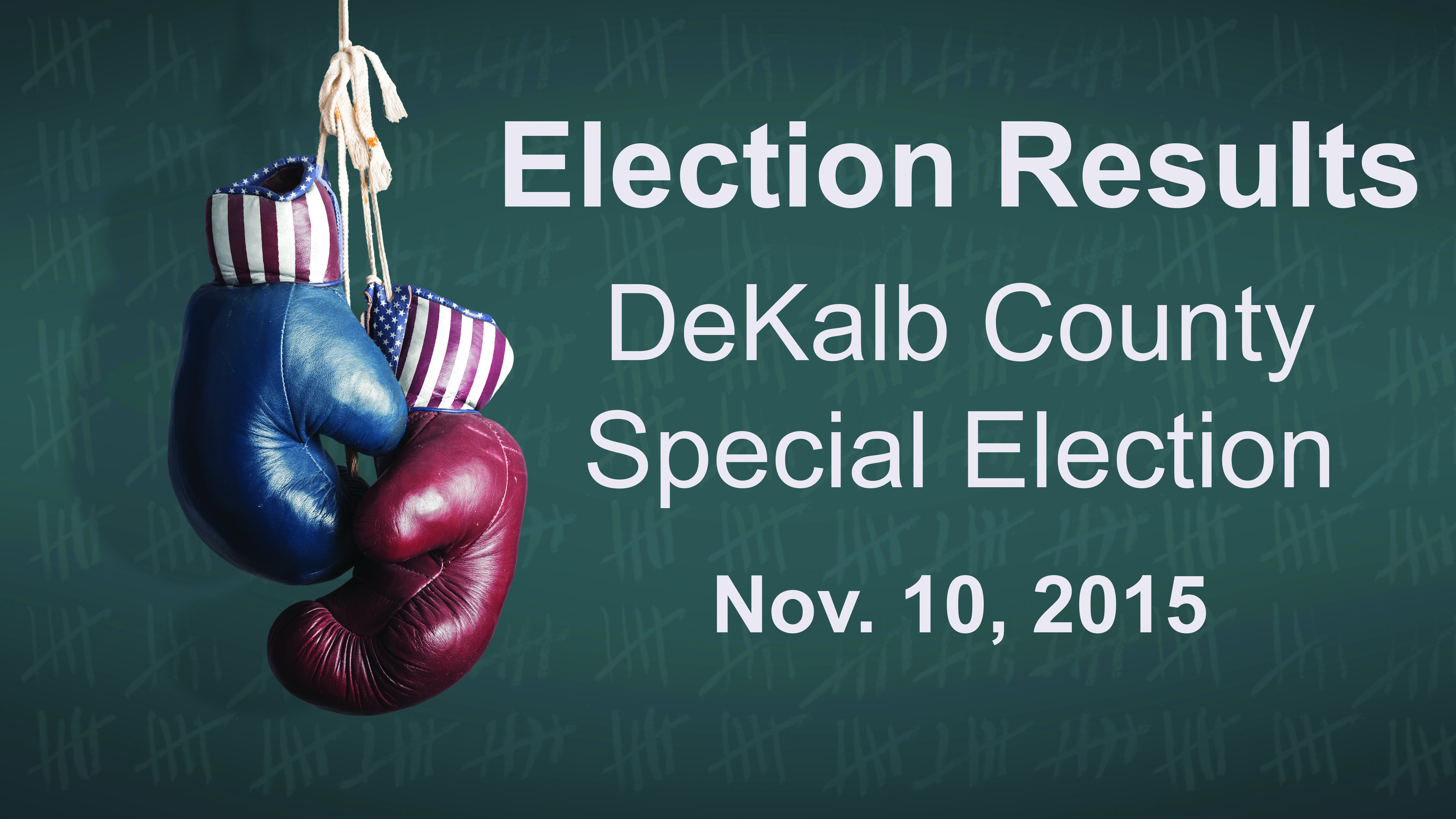 Election Day 2014 - Democrats and Republicans in the campaign