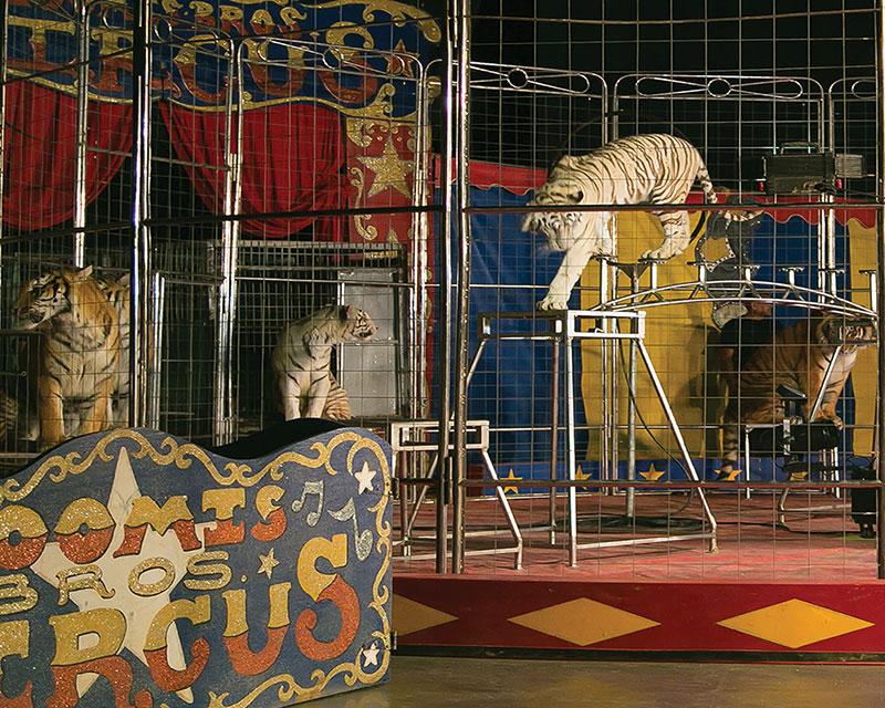 Loomis Bros. Circus performing in Rainsville Tues., Wed.