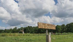 Open Farm Fridays at the Farm at Windy Hill