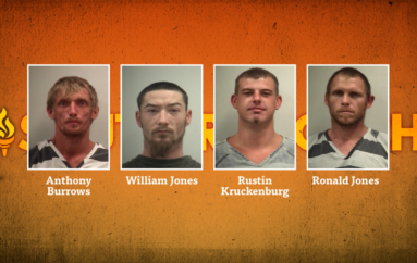 Deputies make multiple arrests serving warrant