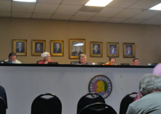 Geraldine Town Council Update for September