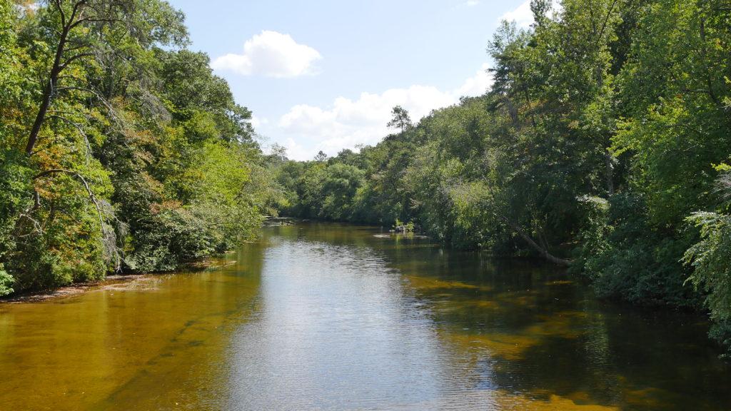 View of Town Creek from the bridge. (Photo by Tyler Pruett)