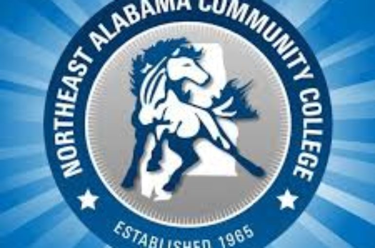 Annual DeKalb County AFAPA Run/Walk to be held at NACC