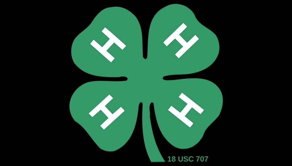 The 4-H Statewide Horse show is here!