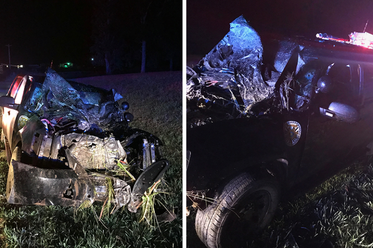DeKalb County K-9 Deputy hits bull on Highway 75 in Fyffe