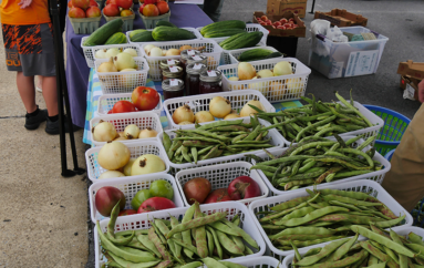 Fort Payne Main Street Farmer's Market now open on Wednesday