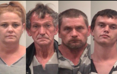 Several arrested for drug possession in traffic stops on Sand Mountain