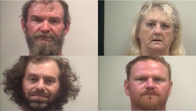 Several arrested on outstanding warrants