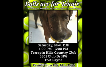 Tennis lessons to benefit Friends of Adoption Center