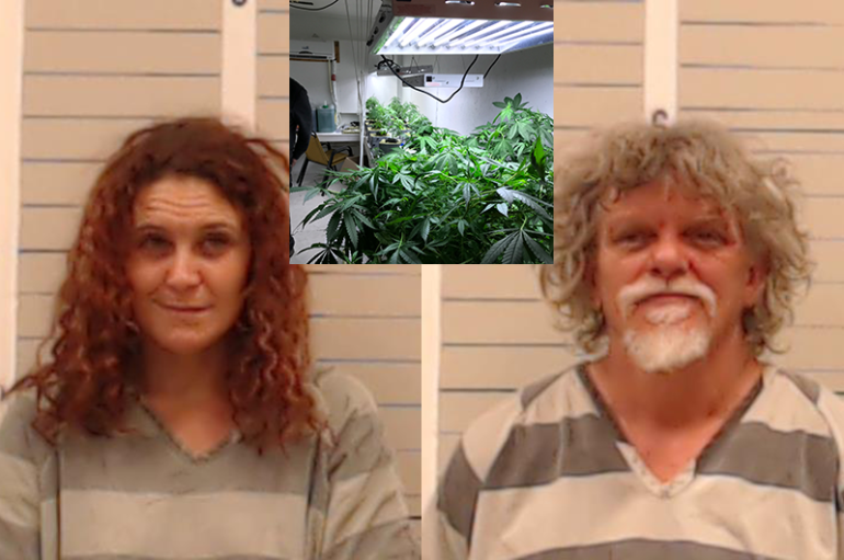 Investigators find marijuana grow during human-trafficking search in Geraldine