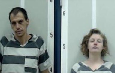 Two arrested after string of thefts in Sylvania