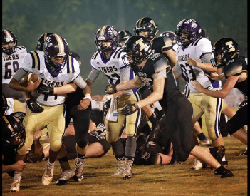 Tigers Tame the Hornets