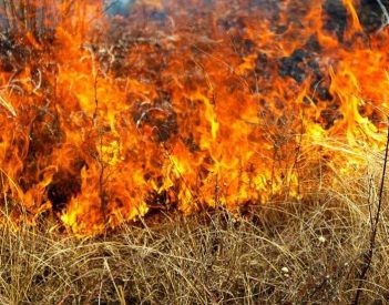 Summer Burn Ban Goes Into Effect