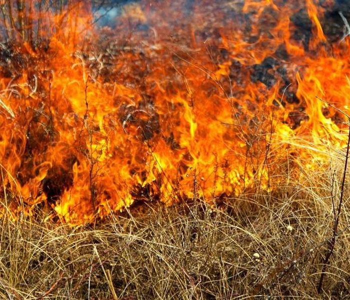 Summer Burn Ban Goes Into Effect