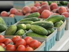 Farmers Market Scheduled to Open