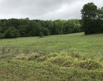 Build your dream home on these four acres in Rainsville City Limits!