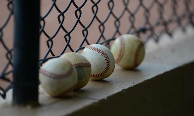 Ider Baseball Holds Boston Butts Sale